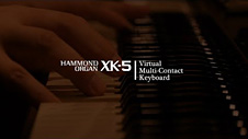 HAMMOND XK-5 Virtual Multi-Contact Keyboard