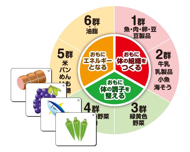 食材マグネットカード SYM-01